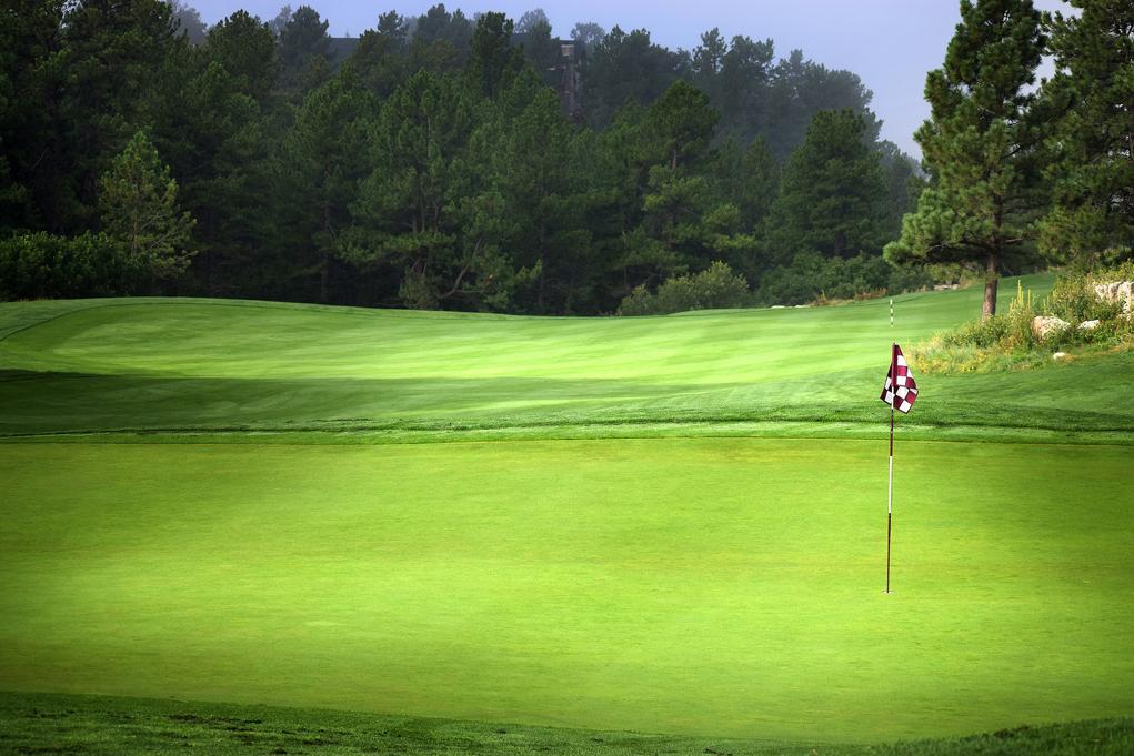 "Torneo de Golf de ""El Economista"""