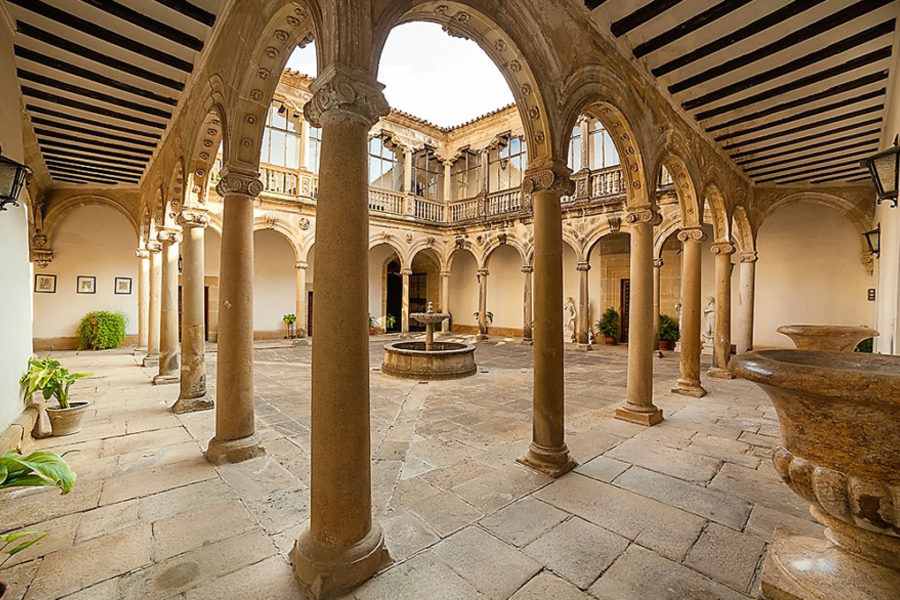 Olivos y Castillos